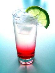 Cocktailbar inhuren