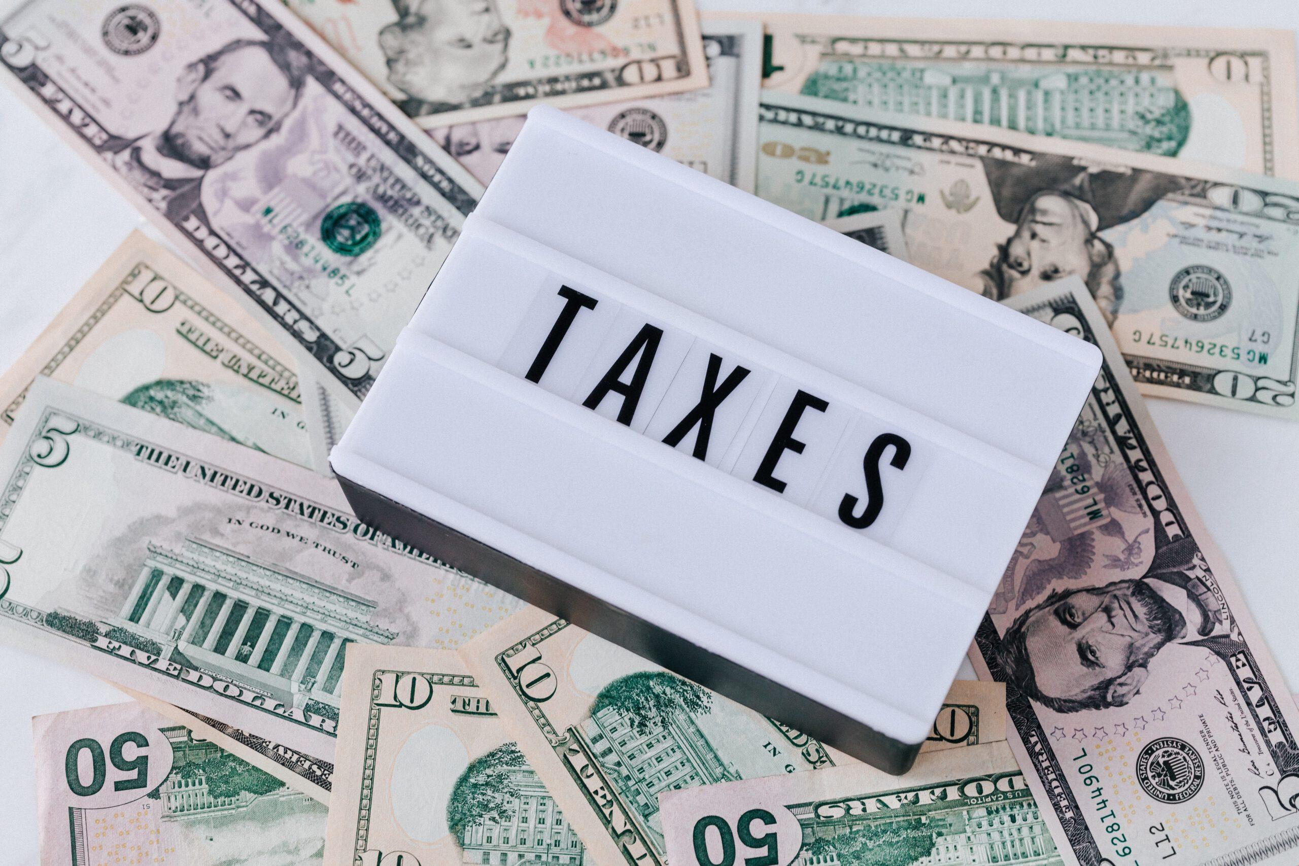 belastingadviseurs rotterdam
